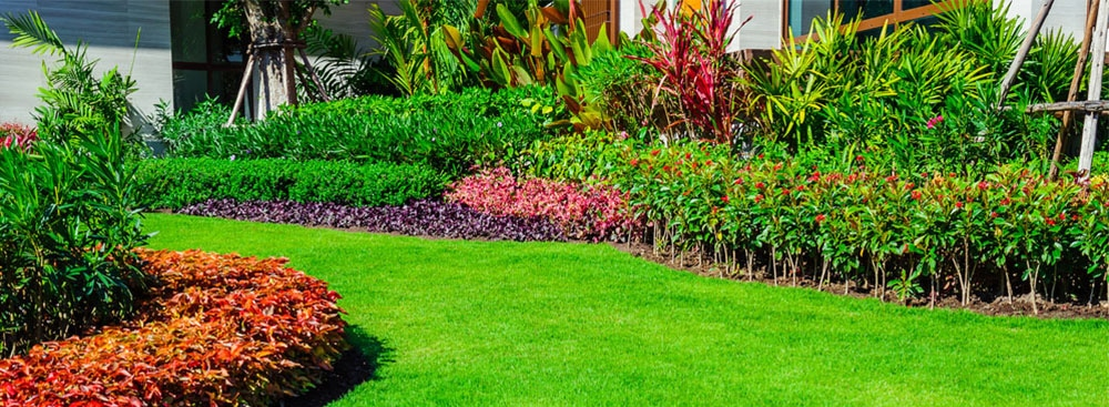 Garden and reticulation services Perth - Gardening and reticulation repairs